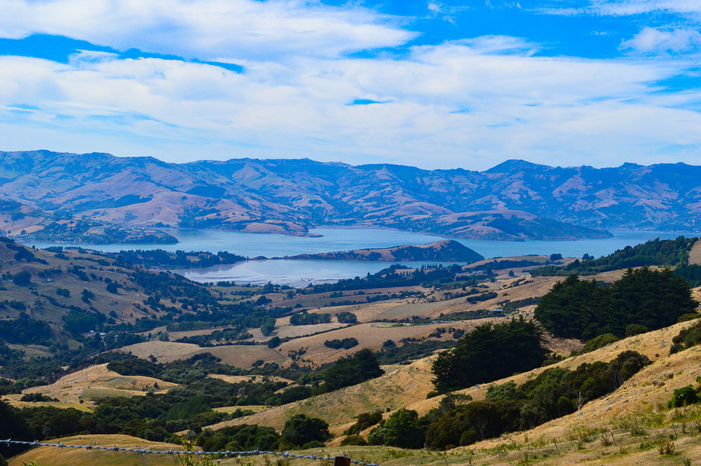 rolling hills and lake views on way to Arrowtown