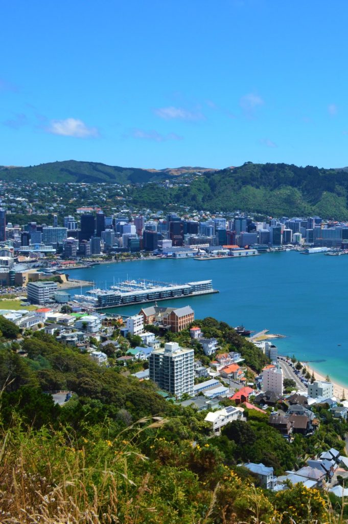 wellington from scenic viewpoint