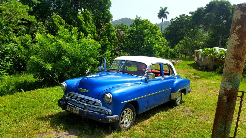 Vintage car parked in the jungle in Cuba