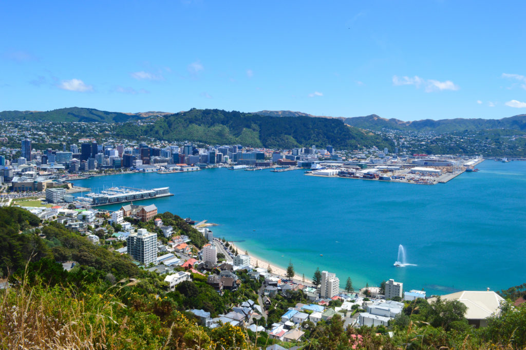 wellington from lookout