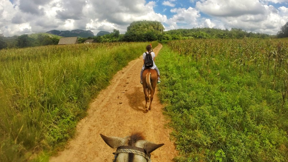 horse riding through fields on a Cuba two week itinerary