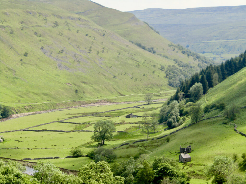 green hills and meadows in swaledale in yorkshire