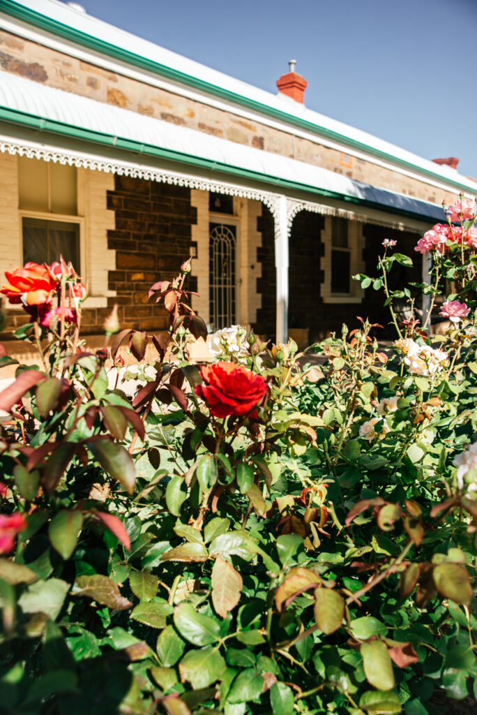 roses in front of terraced copper miners cottage
