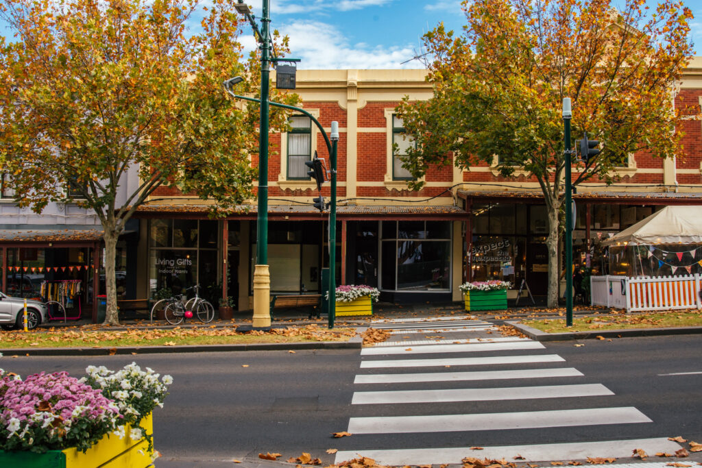 pedestrian crossing and autumnal trees in front of shops in Bendigo