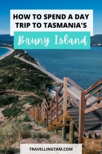 how to spend a day trip on a bruny island day tour