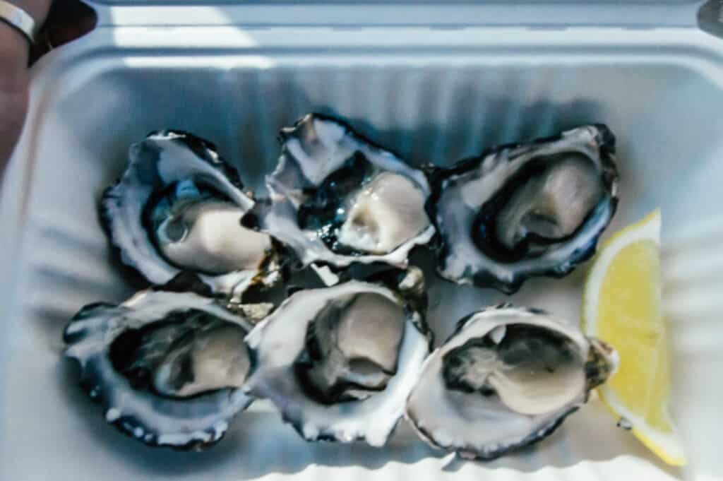 paper box of Bruny Island Oysters and a wedge of lemon