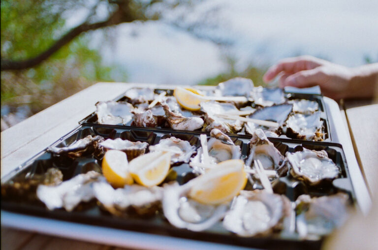 tray of natural oysters outside with lemon